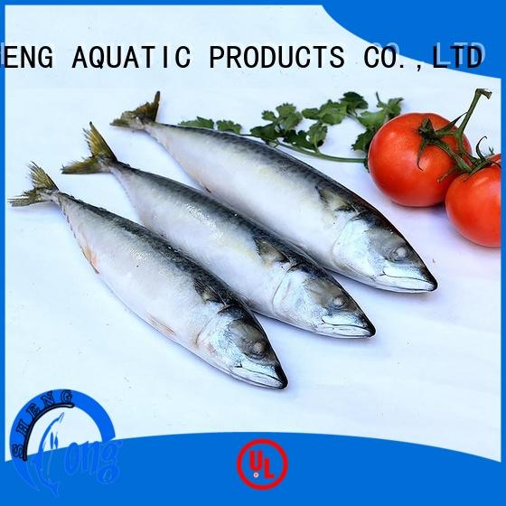 Top frozen mackerel fish for sale frozen company for market