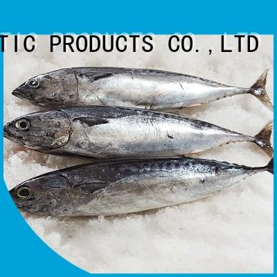 LongSheng frozen bonito fish price Suppliers for seafood shop
