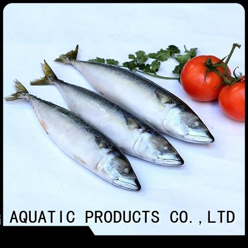 LongSheng round frozen whole round mackerel Suppliers