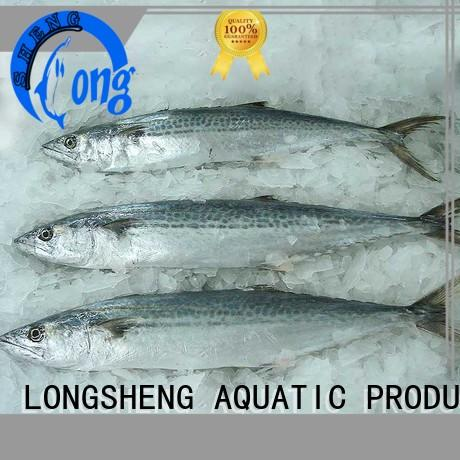 frozen spanish mackerel roundfrozen for seafood shop LongSheng