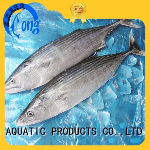 bulk buy frozen bonito tuna frozen for business for dinner
