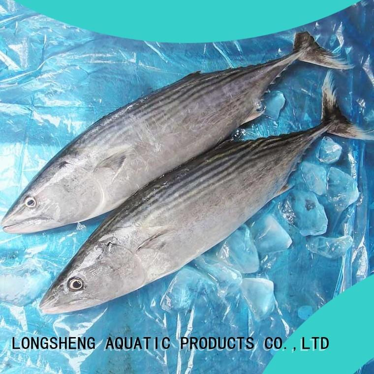Best frozen tuna fish price bonito for business for lunch