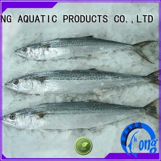 Latest spanish mackerel fillets for sale sale for supermarket