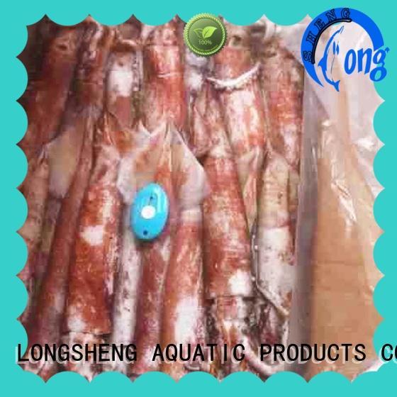 frozen Squid whole round  (  Chinese loligo)