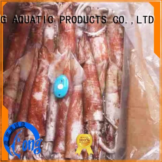cuttlefish frozen squid tubes whole for restaurant LongSheng