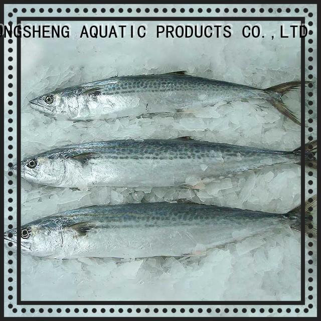 LongSheng wholesale fresh frozen fish Suppliers for market