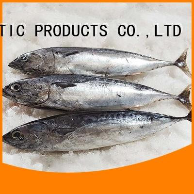 bulk buy frozen bonito fish prices round factory for family