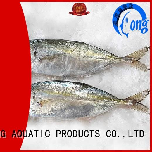 frozen horse mackerel frozen for business for cafeteria