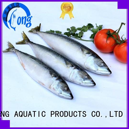 good quality frozen fish whole supplier