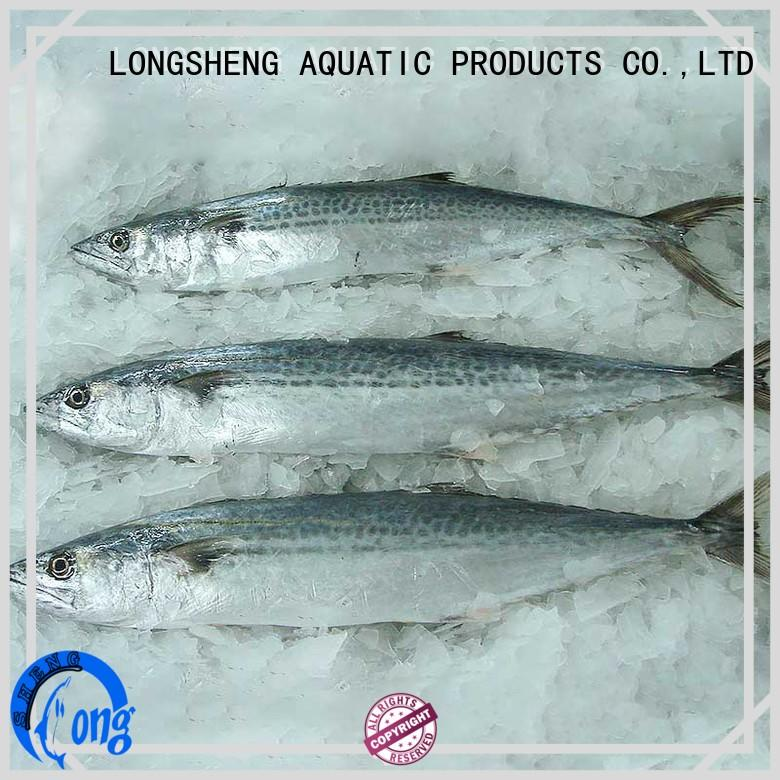 Wholesale frozen at sea fish prices mackerel for business for supermarket