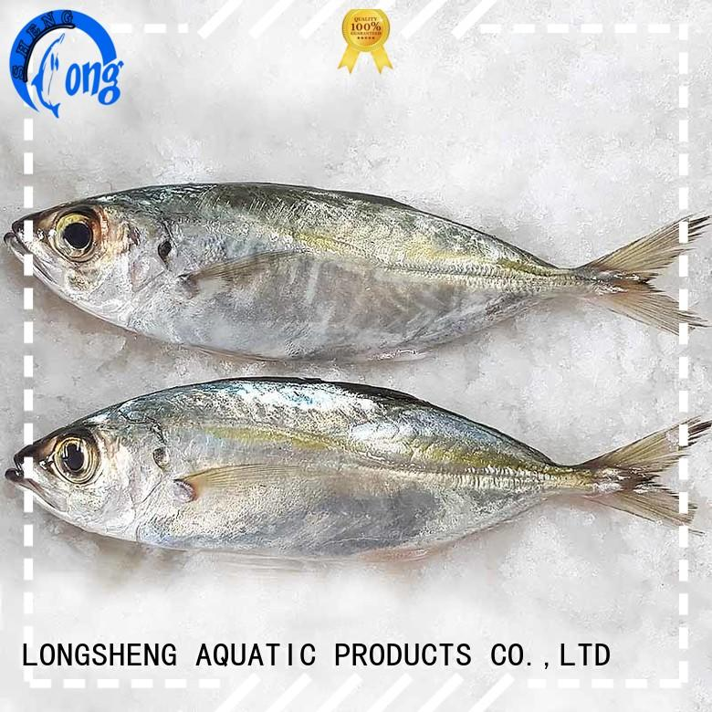 natural Frozen Horse mackerel whole round delivery for cafe