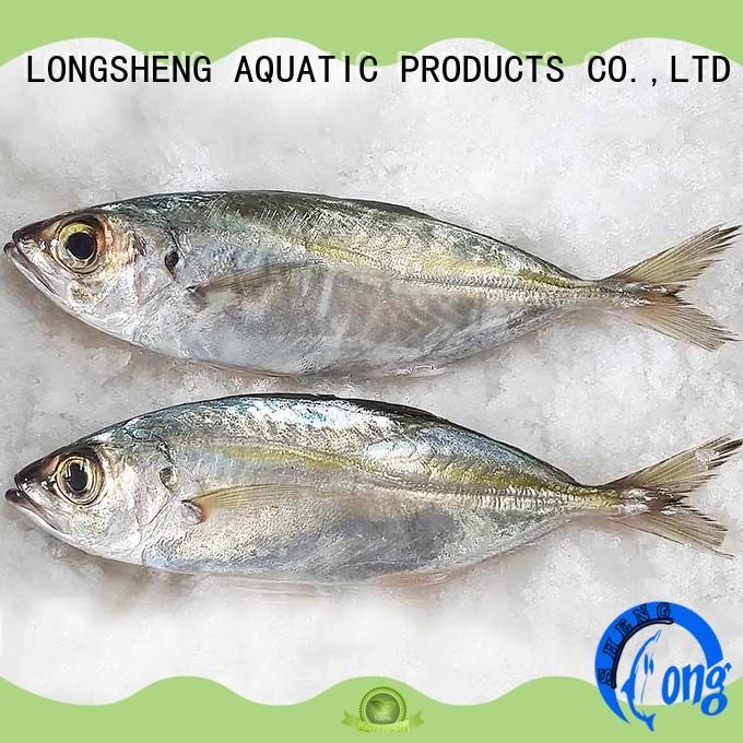 New frozen horse mackerel fish Suppliers for hotel