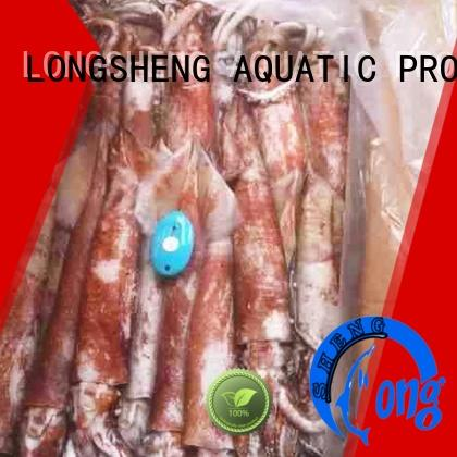 LongSheng fish frozen whole squid online for restaurant