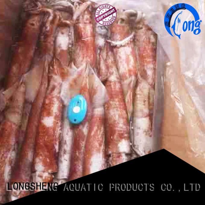 LongSheng natural squid frozen on sale for restaurant