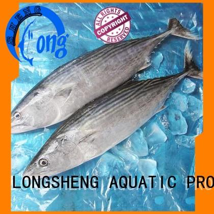 LongSheng clean frozen albacore tuna sarda for family