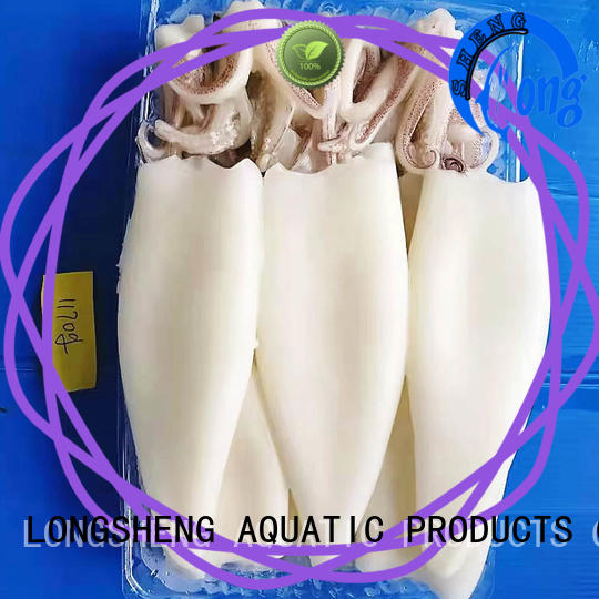 LongSheng tubetentacle) squid frozen on sale for cafe