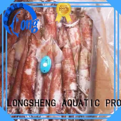 LongSheng illex squid frozen online for hotel