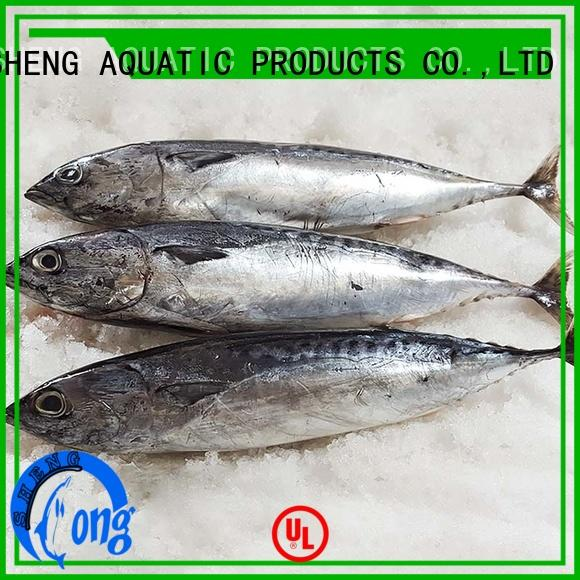 LongSheng New frozen bonito for sale for business for seafood shop