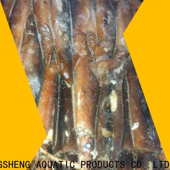 Wholesale squid for sale frozen Suppliers for hotel