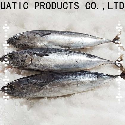 New frozen skipjack for sale bonito Suppliers for market