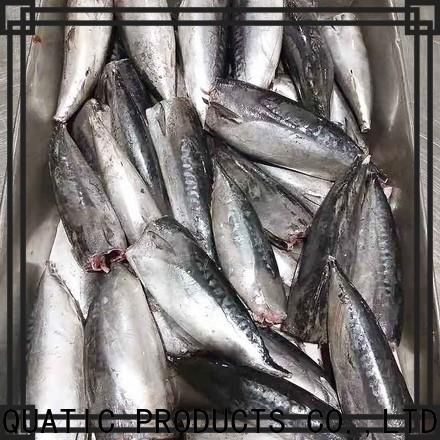 LongSheng high quality frozen bonito fish Suppliers for supermarket
