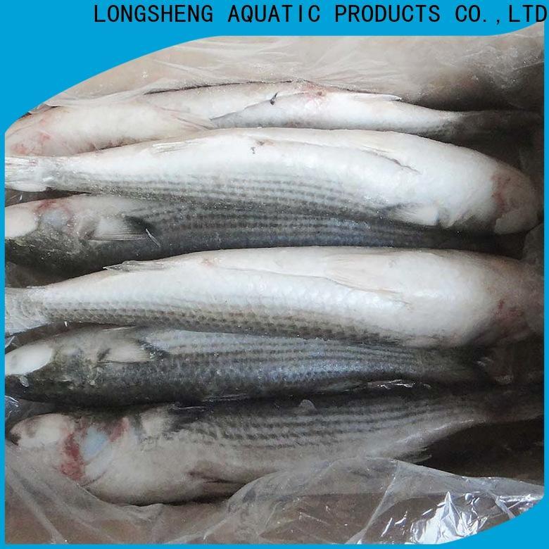 bulk buy frozen mullet grey Supply for market