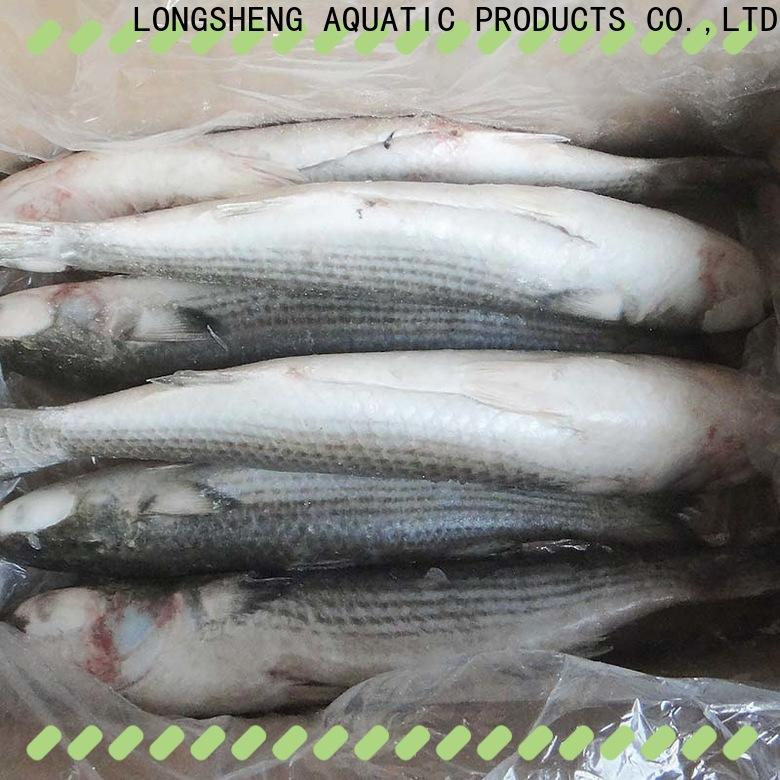 LongSheng bulk purchase Frozen grey mullet fillet for business for market