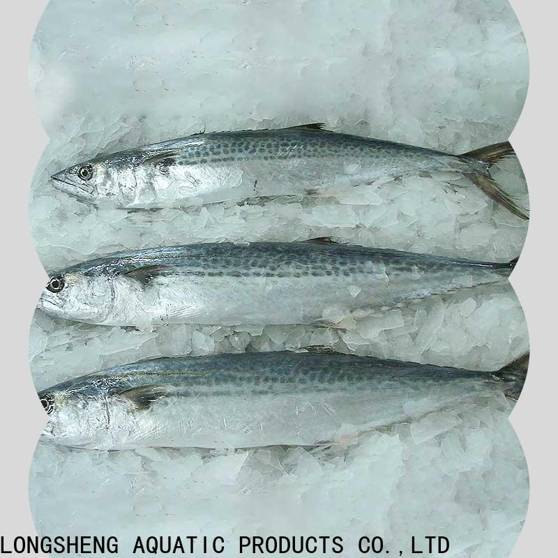 wholesale quality frozen fish spanish manufacturers for market