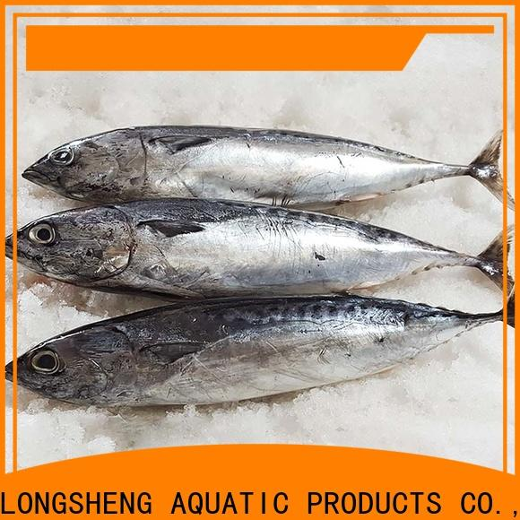 Latest Bonito whole round frozen for business for market
