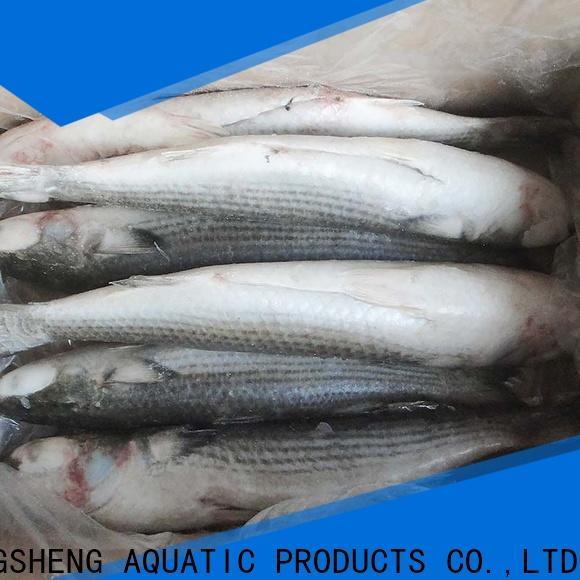 LongSheng mullet Frozen grey mullet fillet Supply for supermarket
