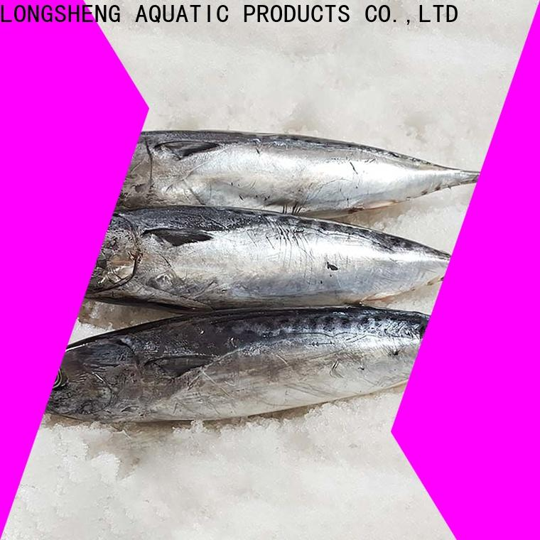 Wholesale bonito whole frozen fish Suppliers for seafood shop