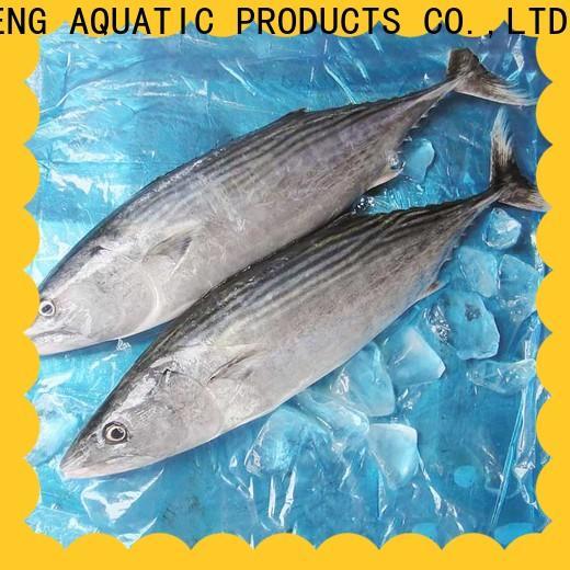 LongSheng tuna frozen fish wholesale factory for family