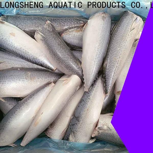 Top frozen chub mackerel fish Supply for market