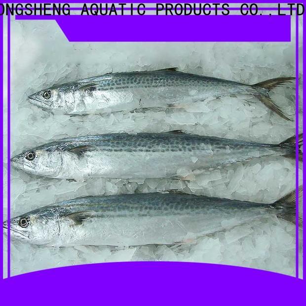 LongSheng New frozen spanish mackerel whole round company for supermarket