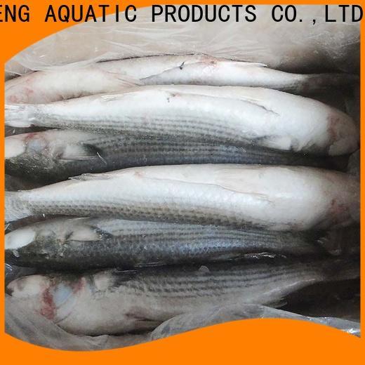 LongSheng Top frozen fish supplier company for market