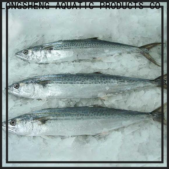 LongSheng security frozen spanish mackerel for supermarket