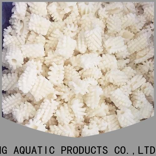 LongSheng bulk purchase frozen whole uncleaned squid for sale for business for restaurant