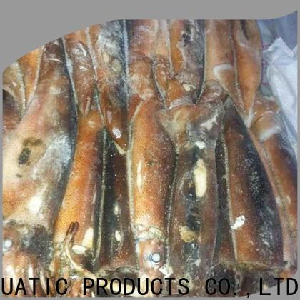 LongSheng tt frozen illex squid whole round factory for cafe