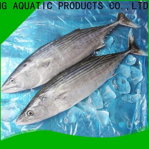 LongSheng bonito frozen skipjack tuna price for business for family