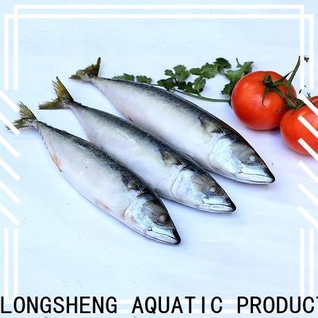 Latest fish frozen mackerel frozen for business for market