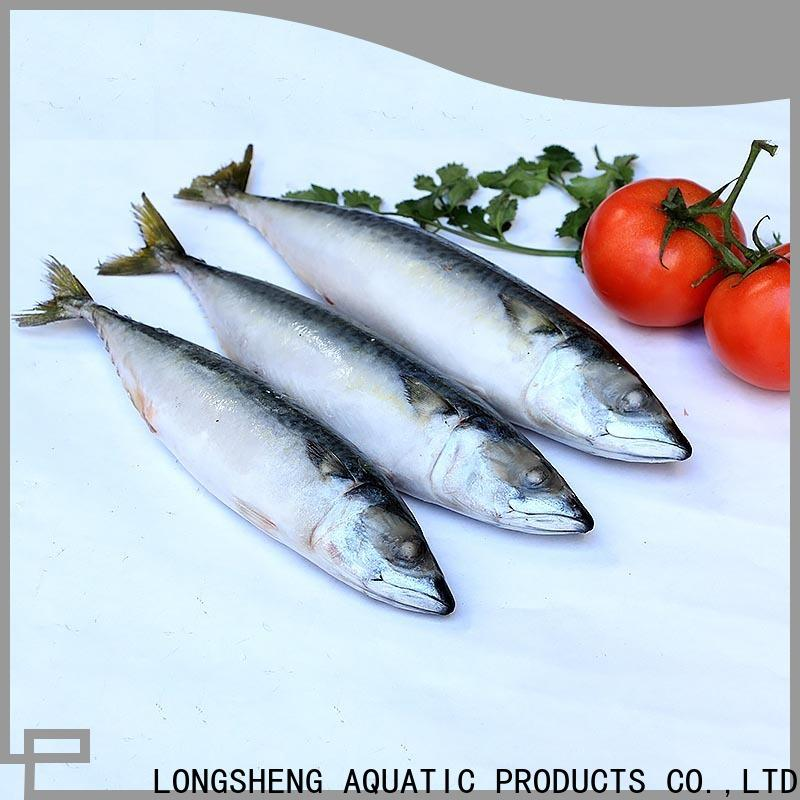 LongSheng best frozen chub mackerel for business for market