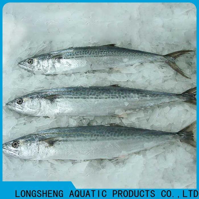 LongSheng Wholesale frozen fish supplier company for seafood market