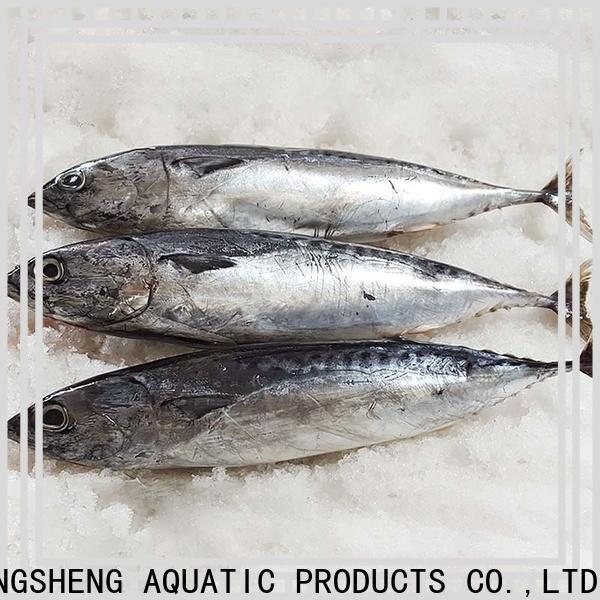 LongSheng bulk buy frozen bonito fish price for business for family