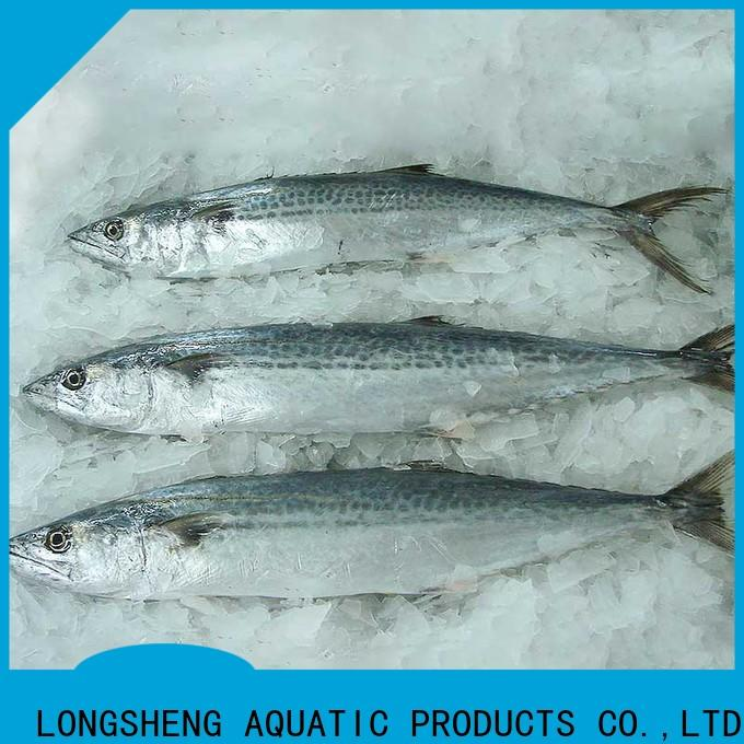 LongSheng spanish frozen spanish mackerel fillet factory for market