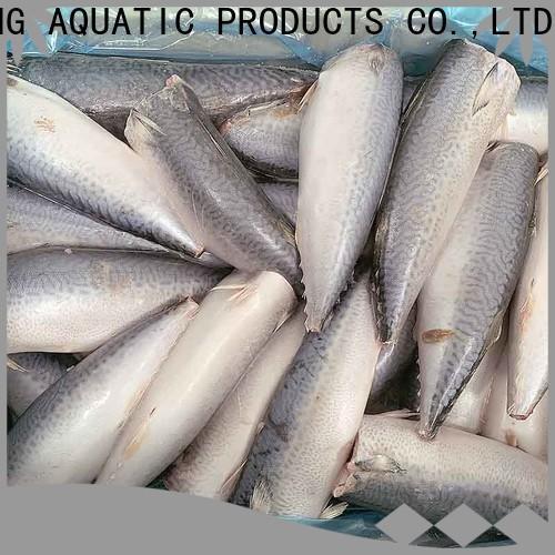 LongSheng Best frozen mackerel fillet manufacturers