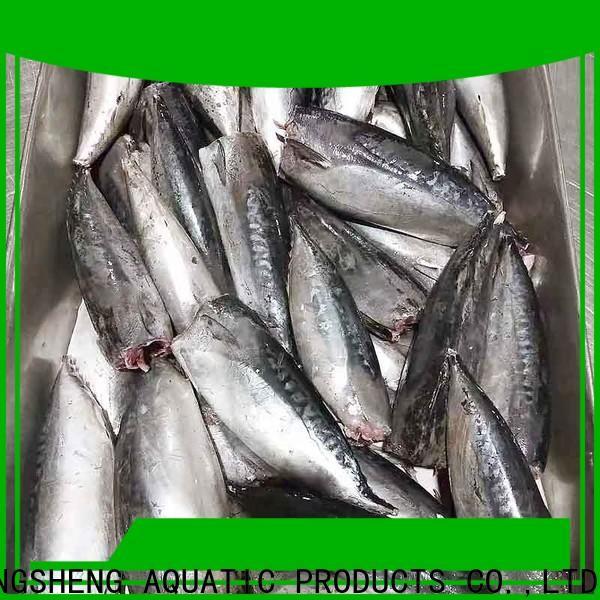bulk purchase bonito whole frozen fish manufacturers for market