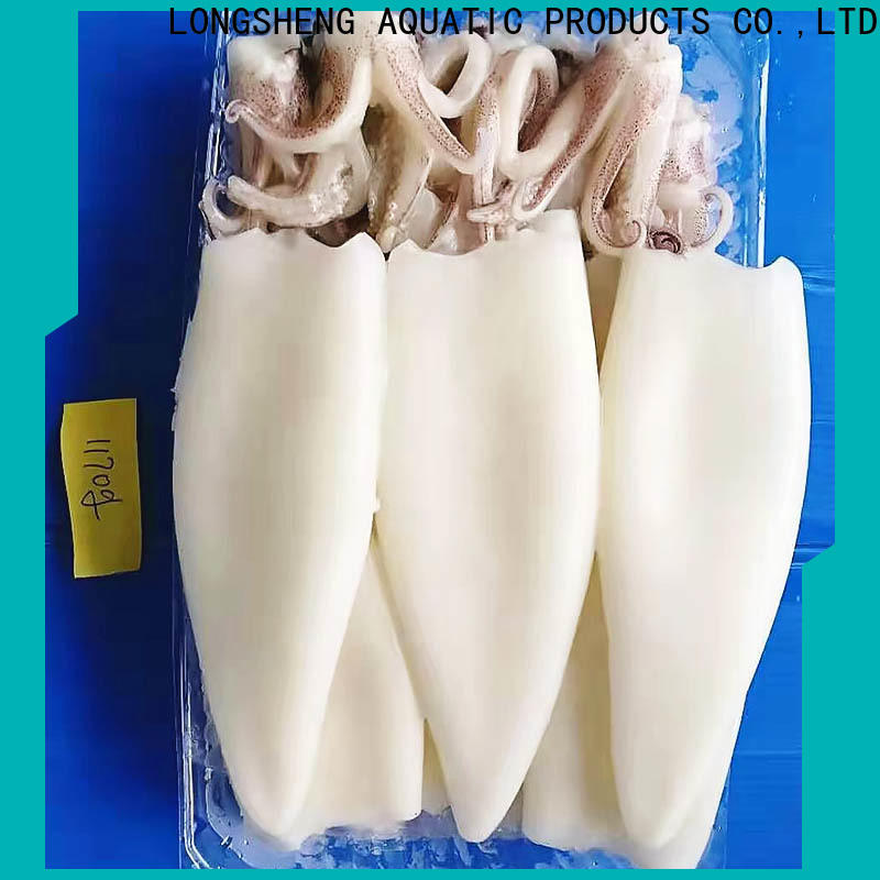 Best frozen squid price chinese factory for hotel