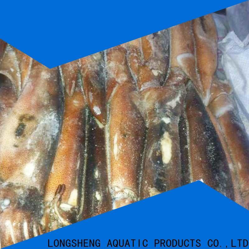 LongSheng wholesale frozen squid whole round factory for restaurant