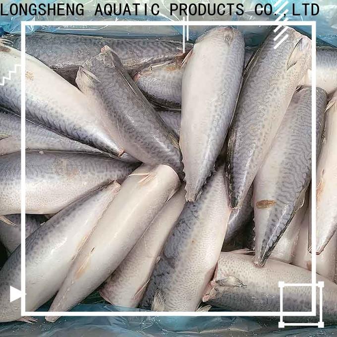 LongSheng fish frozen mackerel for market