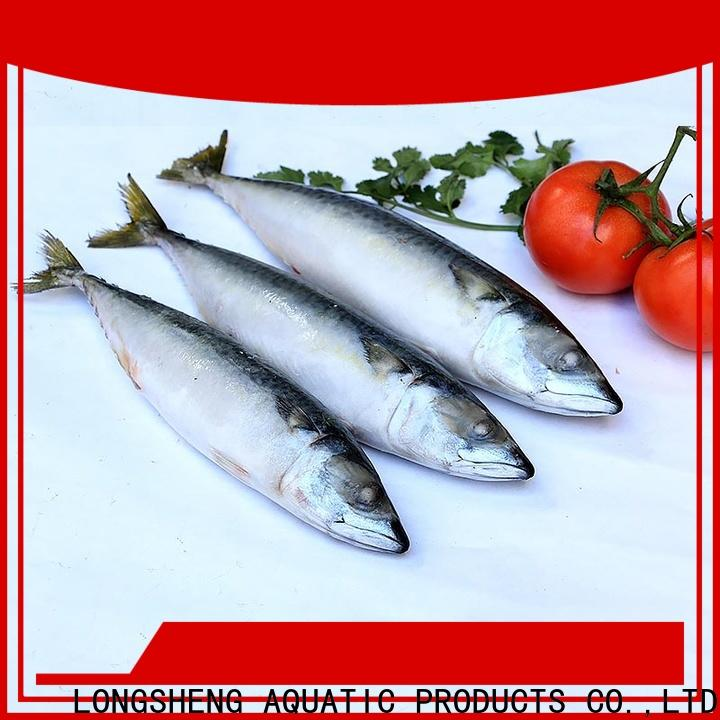 Latest frozen pacific mackerel fish round